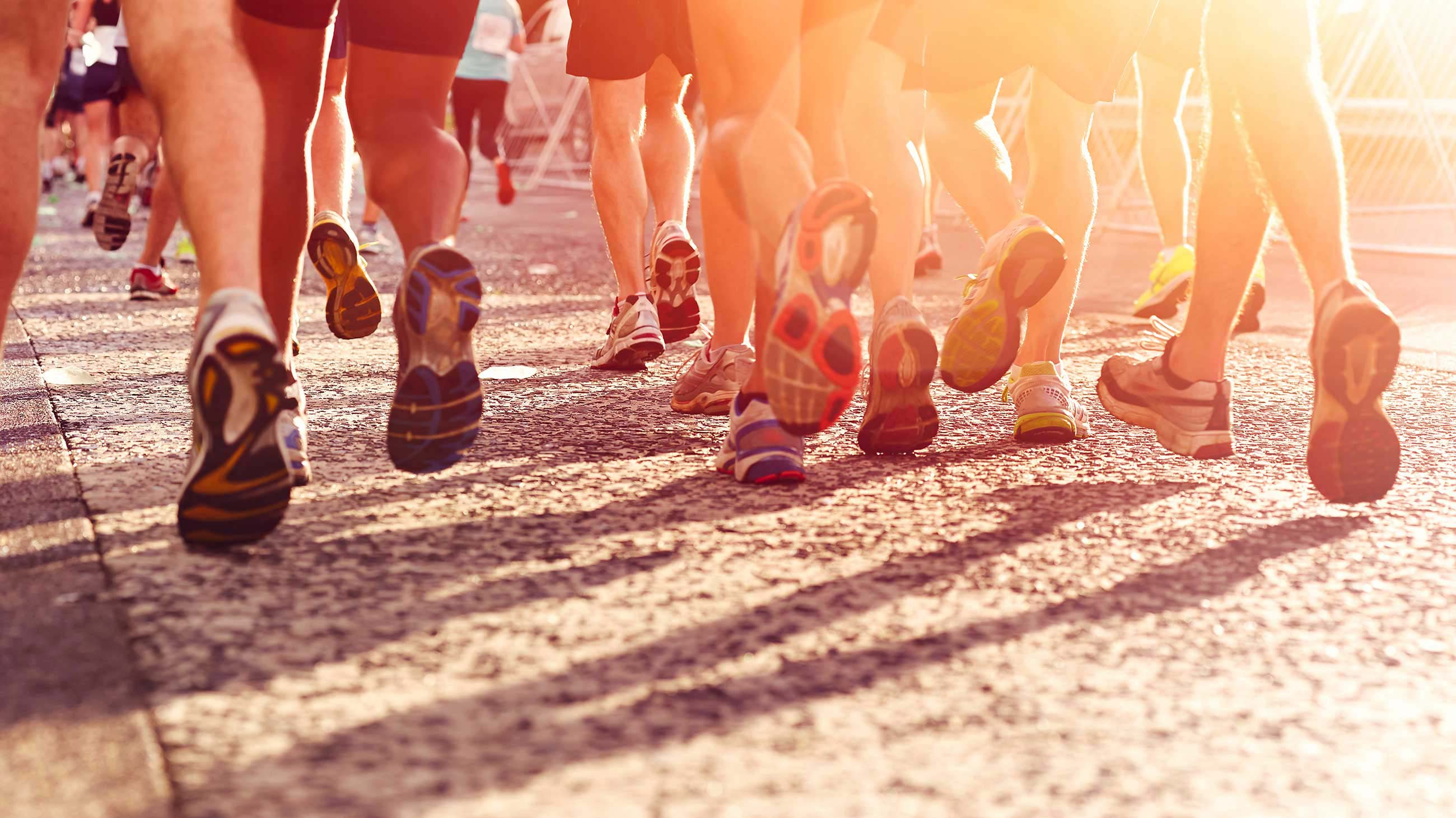 Photo Trip & Run Trip & Trail Running